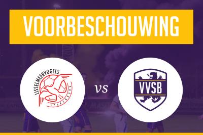 Voorbeschouwing IJsselmeervogels - VVSB