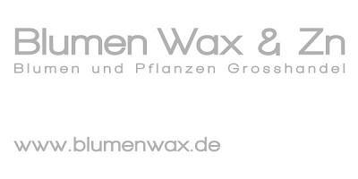 Blumen Wax